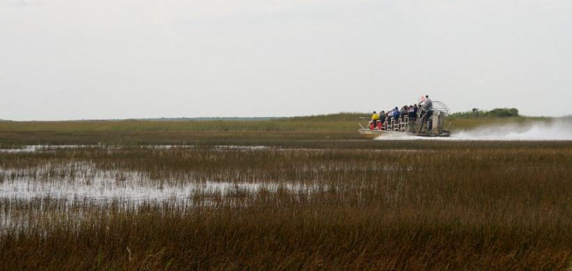 Airboat - Everglades