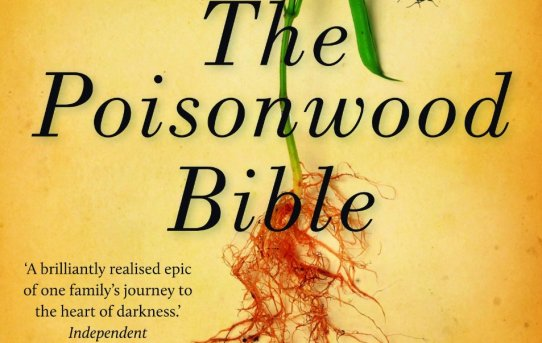 The Poisonwood Bible book review
