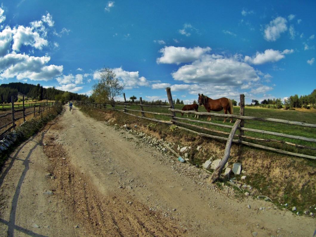 cross-country-bulgaria