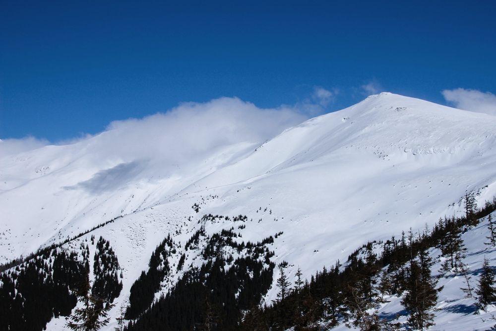 winter-beauty-of-the-rodnei-mountains-maramureș region of romania