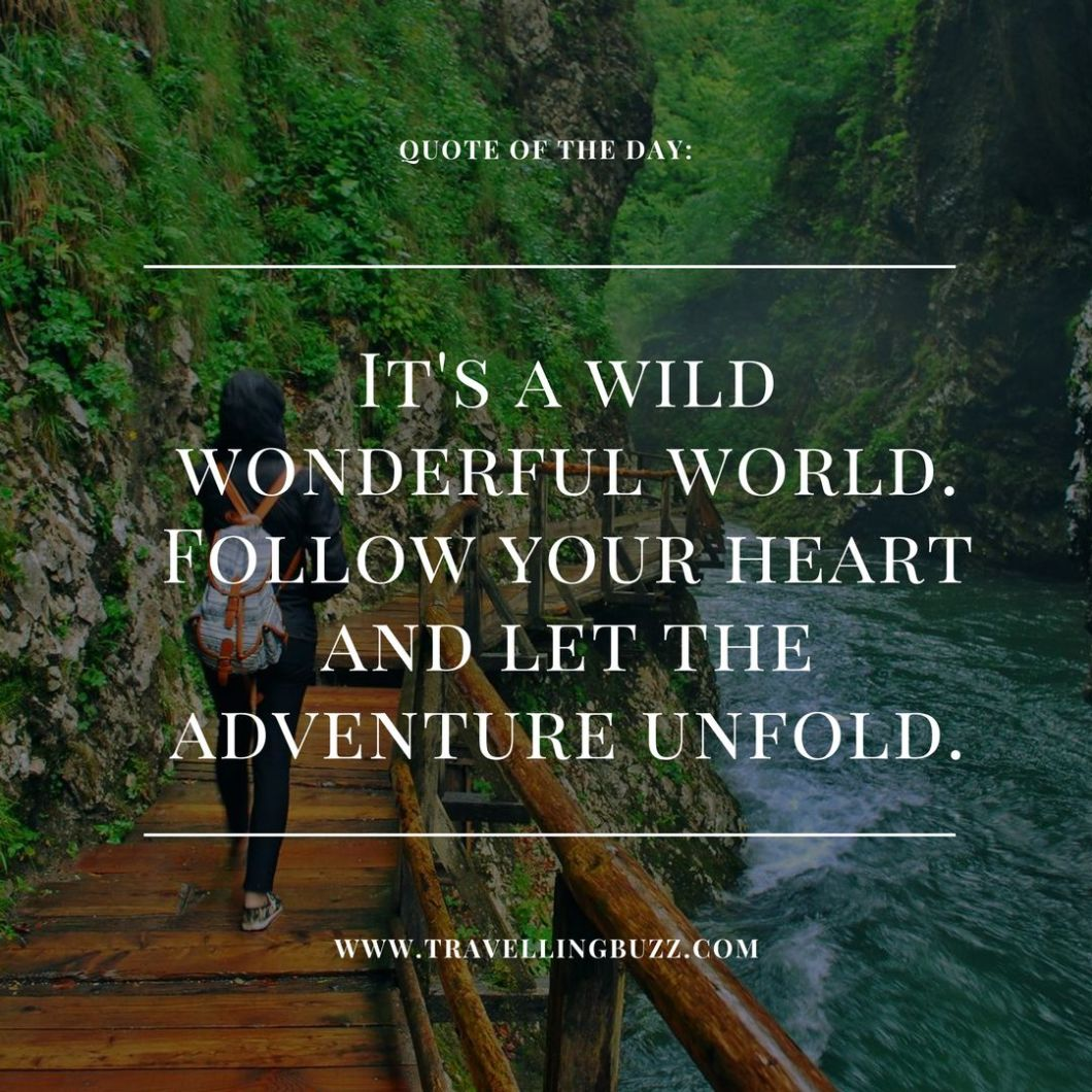 Best travel quotes - It's a wild, wonderful world. Follow your heart and let the adventure unfold.