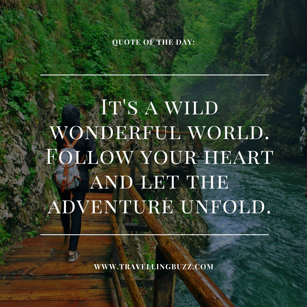 Best travel quotes its a wild wonderful world follow your heart best travel quotes its a wild wonderful world follow your heart and let the adventure unfold thecheapjerseys Image collections