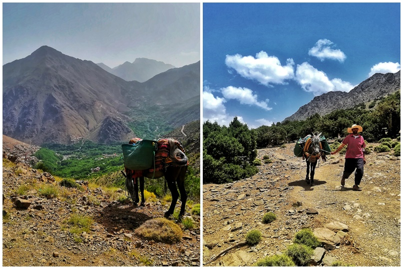 hiking in morocco high atlas mountain with kasbah du toubkal (3)