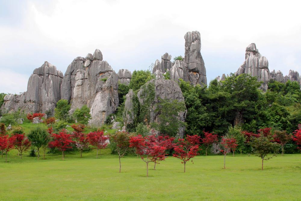 Shilin-Steinwald Kunming Yunnan China