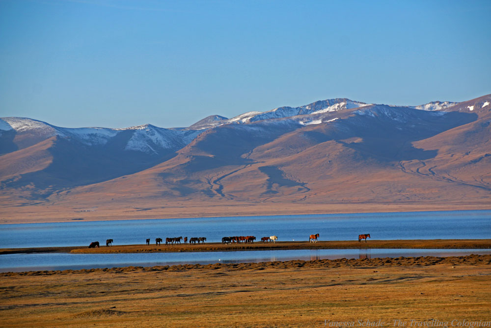 Song-Kul Lake Kyrgyzstan Central Asia ASIA