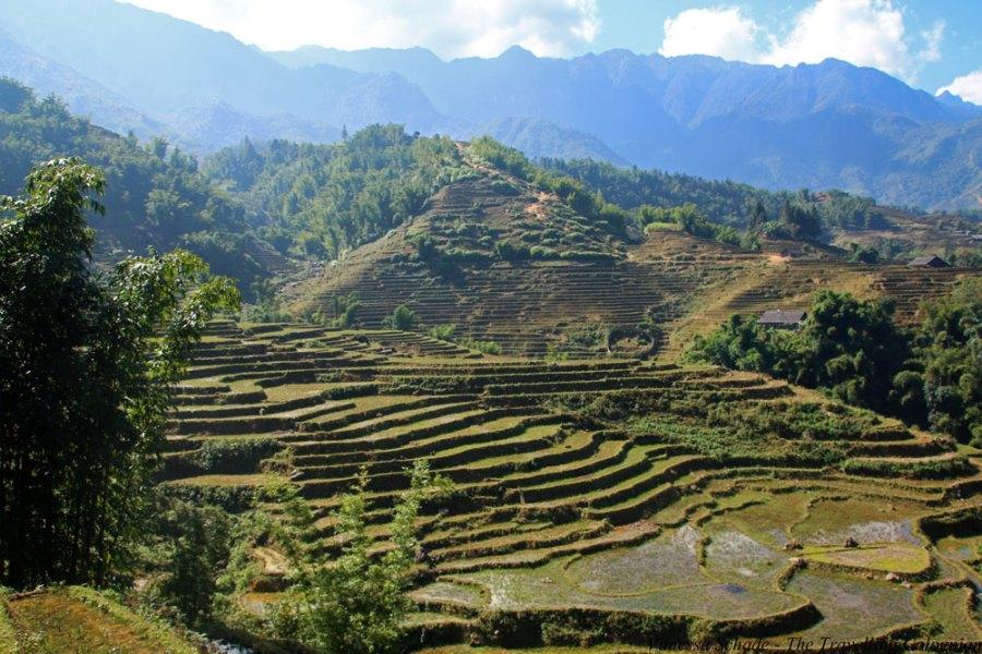 Rice Terraces Mountainous region Sa Pá Vietnam South East Asia ASIA