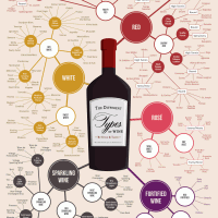 Different Types of Wine Infographic Wine Folly