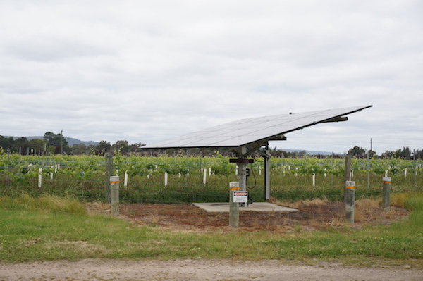 Jane Brook Vineyard in the Swan Valley - Sustainable Practices