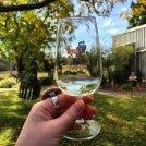 Wine Tasting at Bonking Frog Wines - Geographe Wine Region