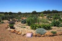 Wine Sensory Garden at Whicher Ridge Wines, Geographe Wine Region
