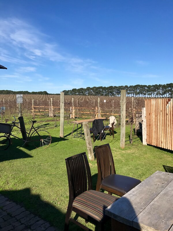 One Day Estate Vineyard - Bellarine Wineries