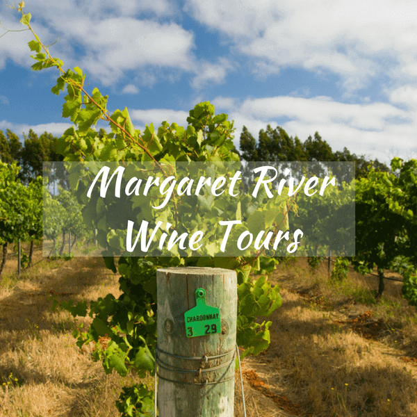 Margaret River Wine Tours - Your Options