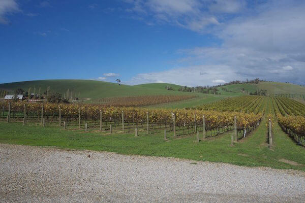 Soumah of the Yarra Valley