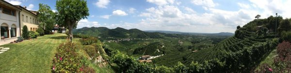 Prosecco winery and vineyard