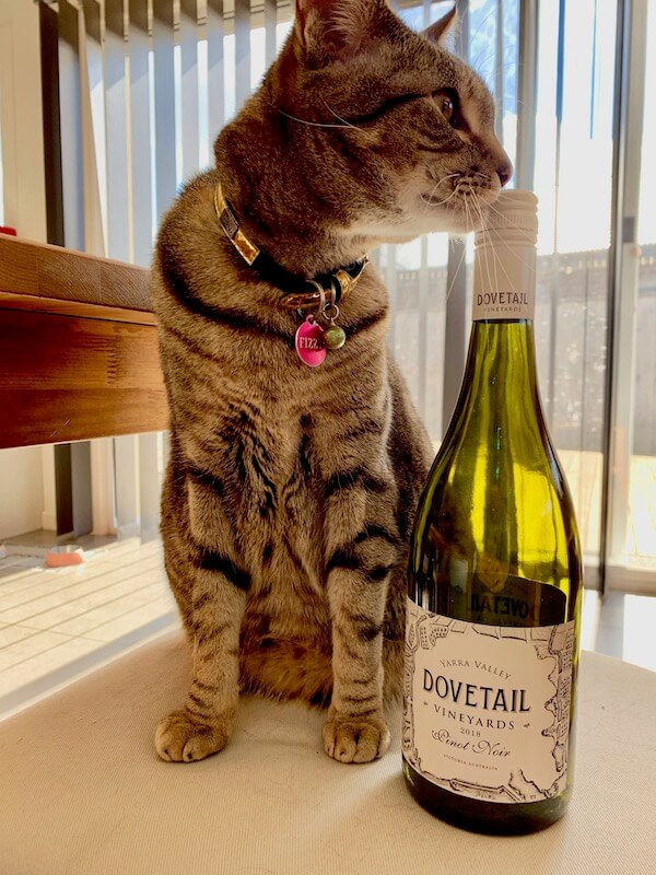 Dovetail Vineyards 2018 Pinot Noir and Fizzy Cat