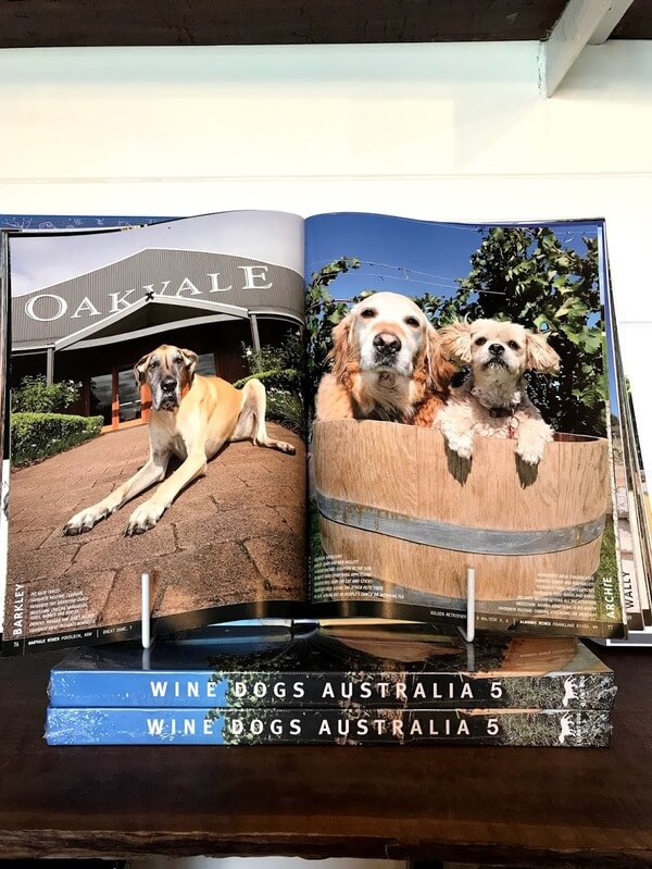 nelson-the-golden-retriever-inside-the-wine-dogs-of-australia-book-with-archie-the-maltese-x-sitting-inside-a-wine-barrel-at-alkoomie-wines-in-frankland-river-great-southern