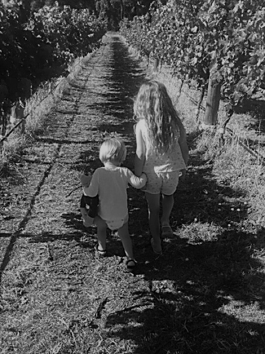 Grandchildren in the vineyard at Stonegaze, Margaret River