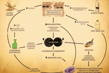 glyphosate inflammation