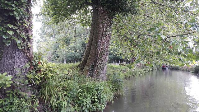 excursion-a-las-marismas-de-Poitu-desde-Poitiers-640