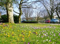 Beautiful English natural gardens designed by man ...