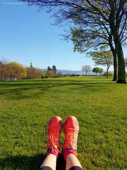 Eamonn Ceannt Park