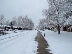 Matt's street - with Snow!