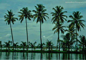 Guest Photography: Kerala Backwaters and HDR experiments