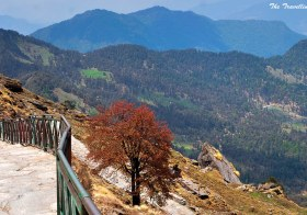 Chopta and Tungnath: Searching Summer Snow