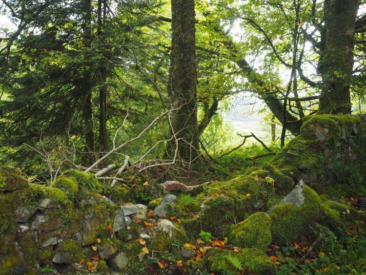 craignure-mull-scotland