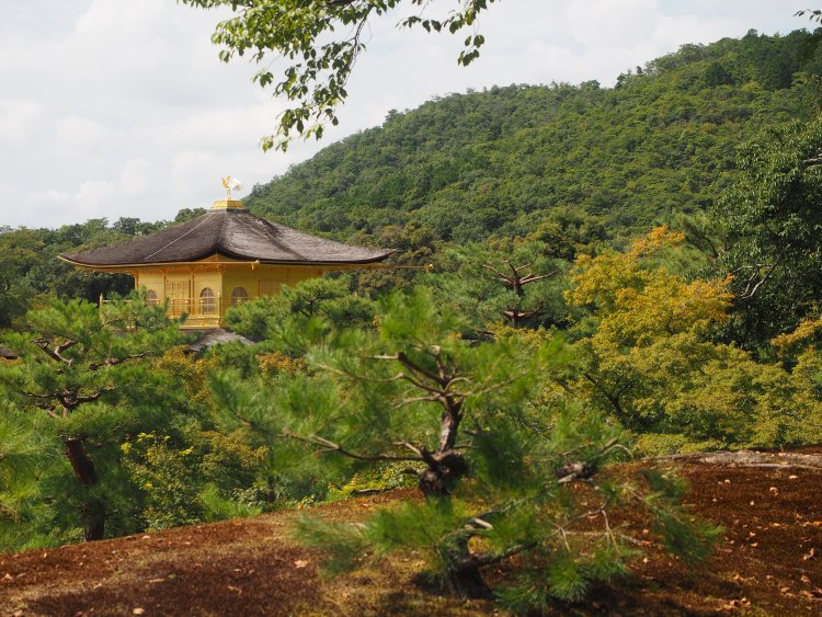 kyoto-japan-kinkakuji-golden-pavillion
