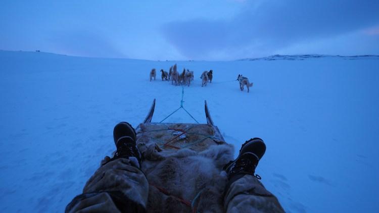 ilulissat-greenland-dog-sledding