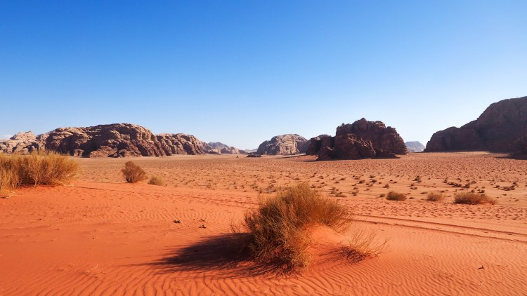 Exploring amazing Wadi Rum and staying overnight in a bedouin camp travel blog!