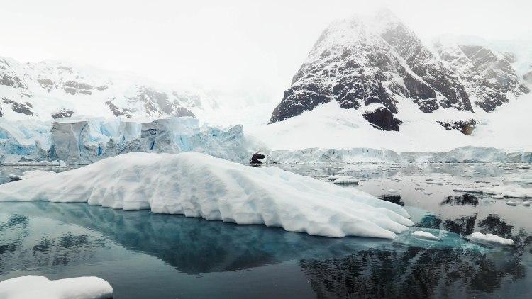 paradise-bay-antarctica-travel-blog-solo-oceanwide-expeditions-zodiac
