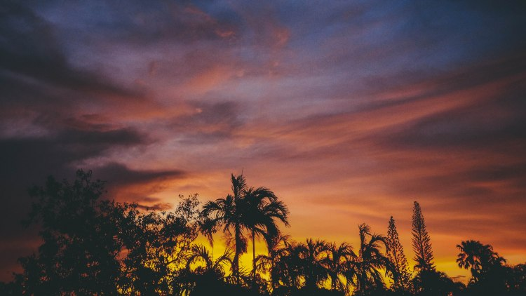 casuarina-sunset-travel-blog-darwin-northern-territory-australia-travelling-the-world-solo