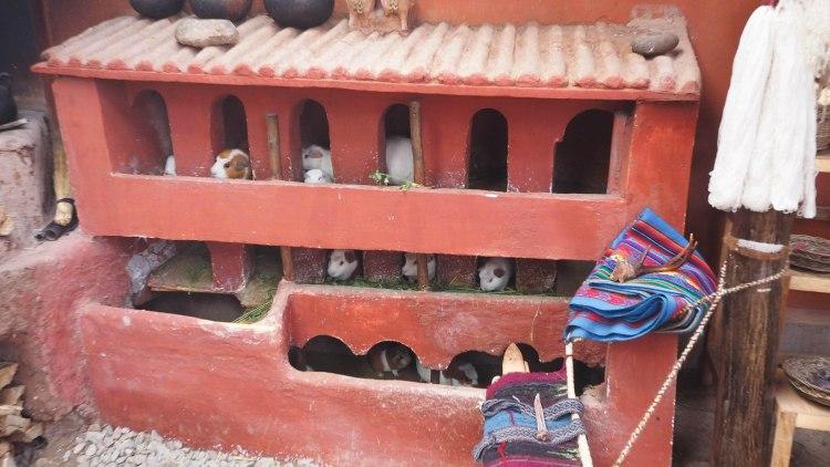 maras-moray-travel-blog-peru-backpacking-travelling-the-world-solo