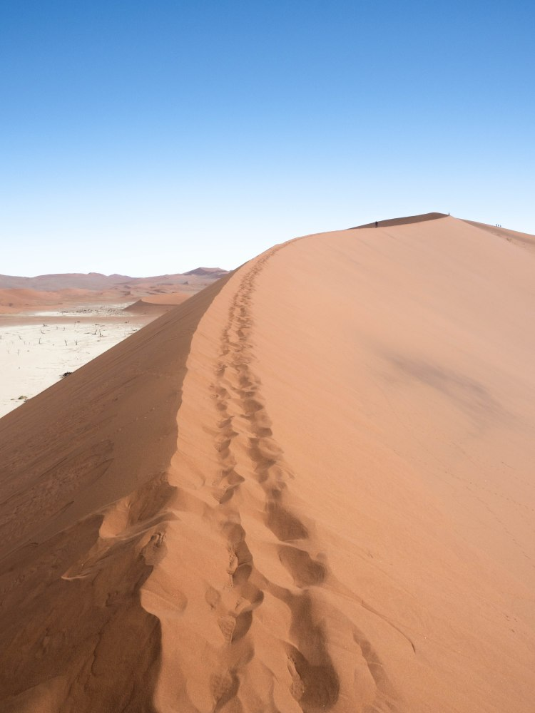 sossusvlei-travel-blog-deadvlei-namibia-road-trip-self-drive-backpacking-travelling-the-world-solo
