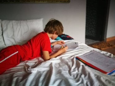 Schoolwerk onderweg, afstandsonderwijs, op vakantie buiten vakantie, leerplicht