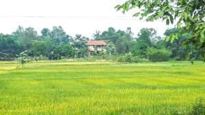Vietnam-Hué-Vu homestay view