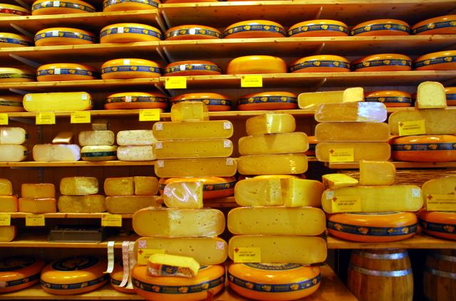 Wall of Cheese