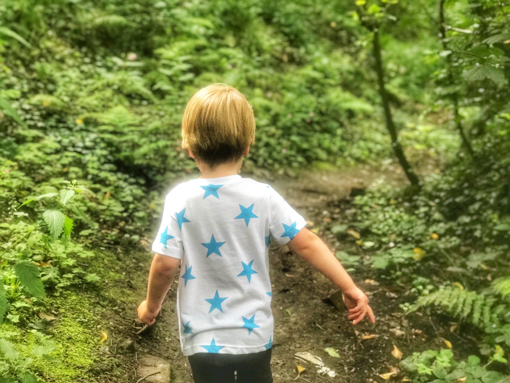 Dexter walking along a path next to greenery in Fairy Glen, Parbold
