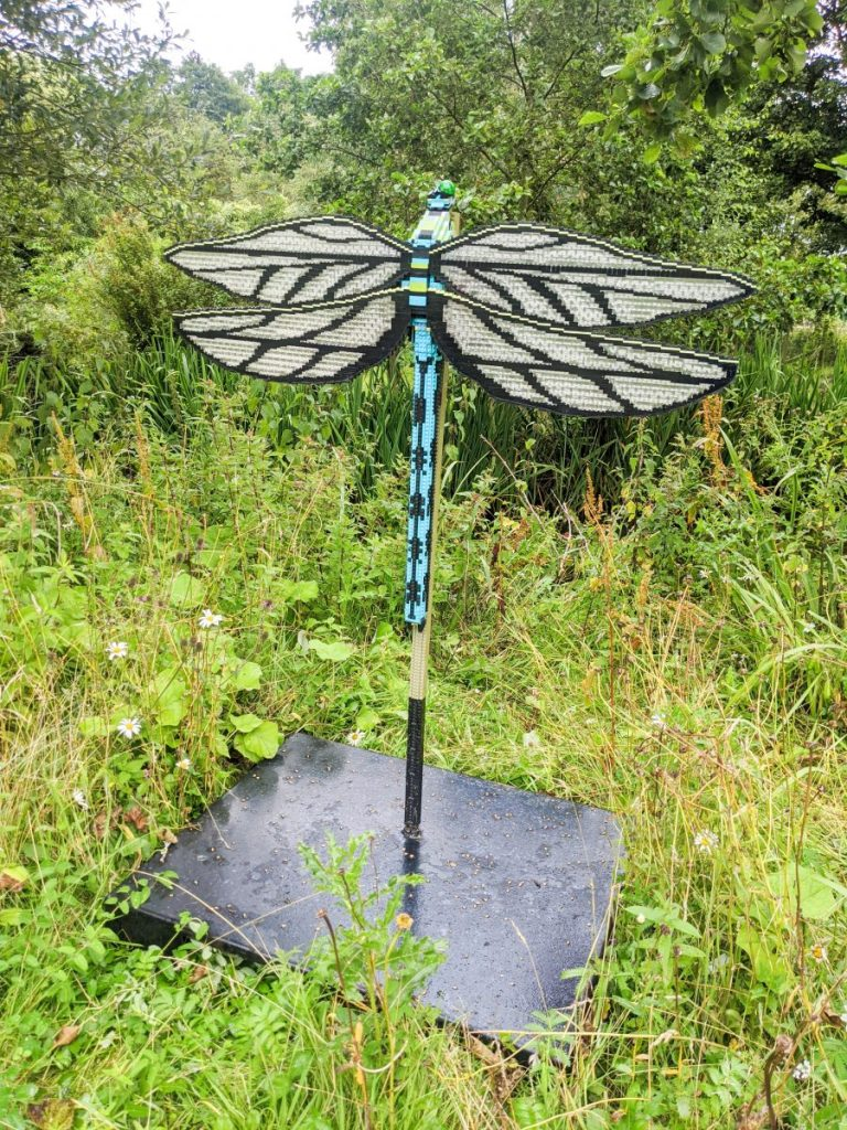 Lego dragonfly at Martin Mere Wetlands Centre