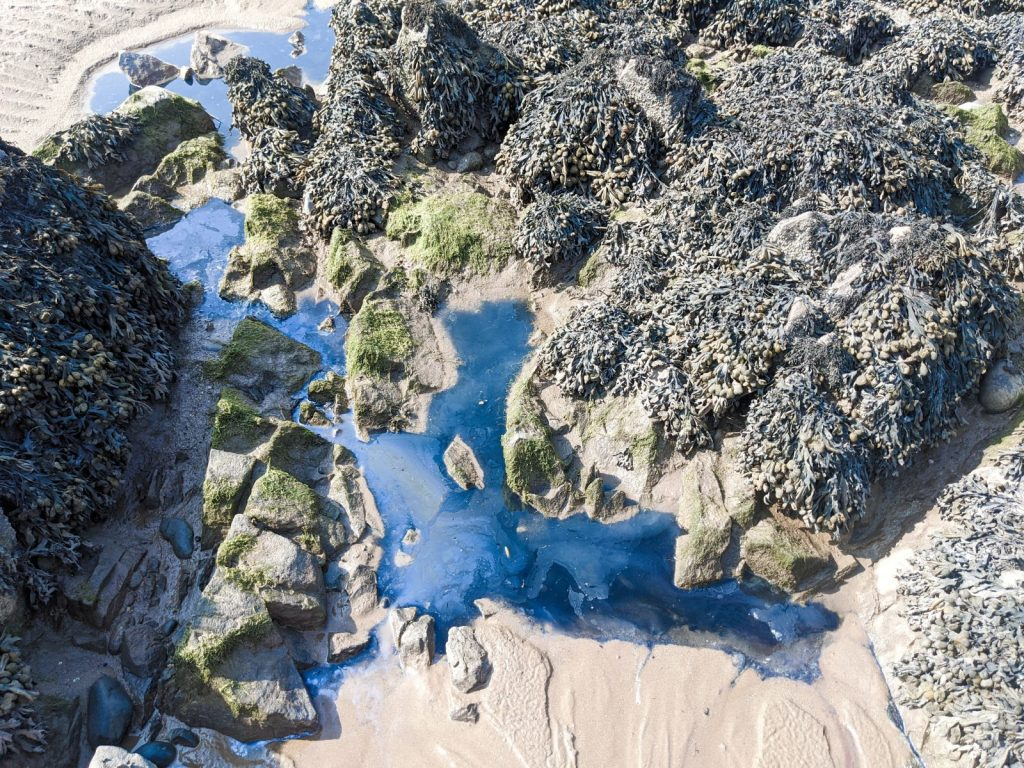Rock pools at Sandyhills beach