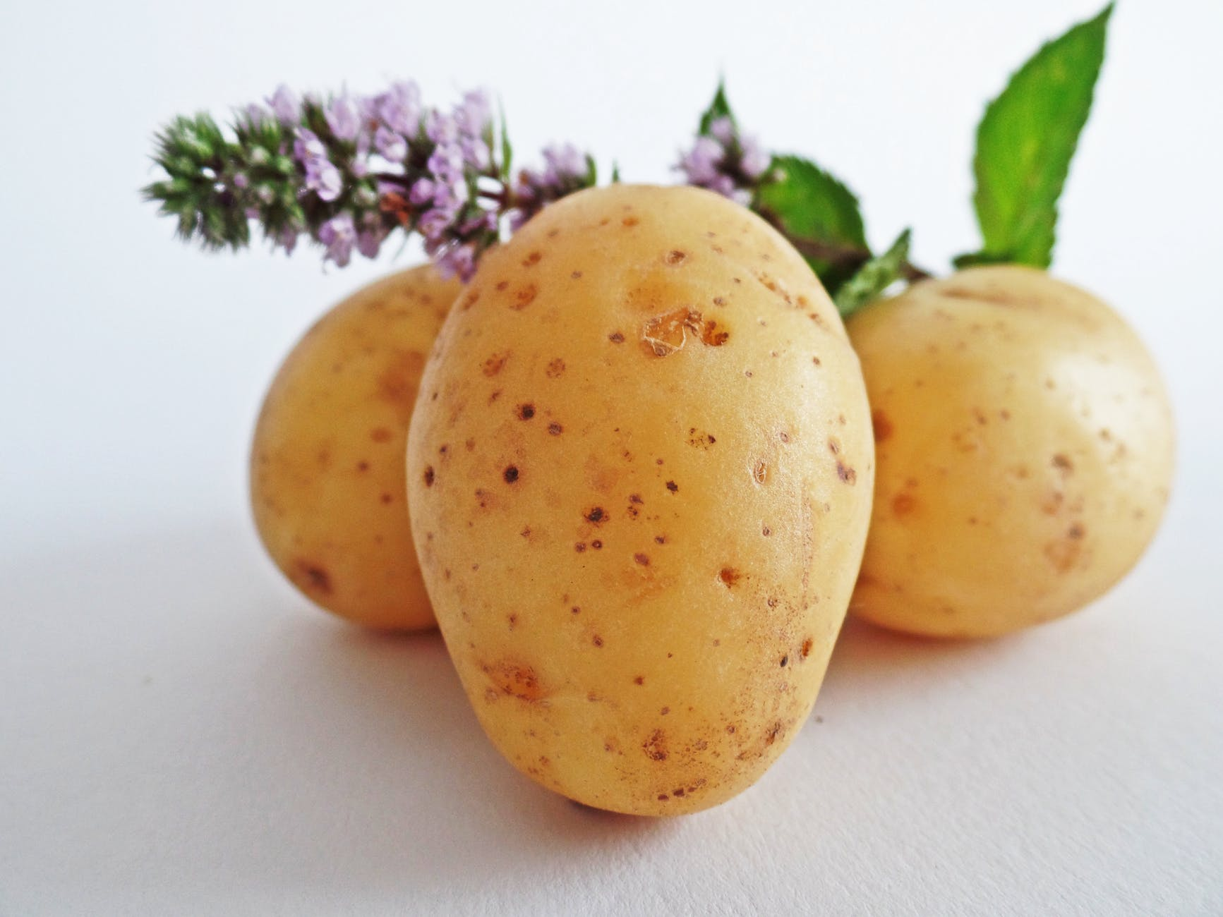 yellow oval potato