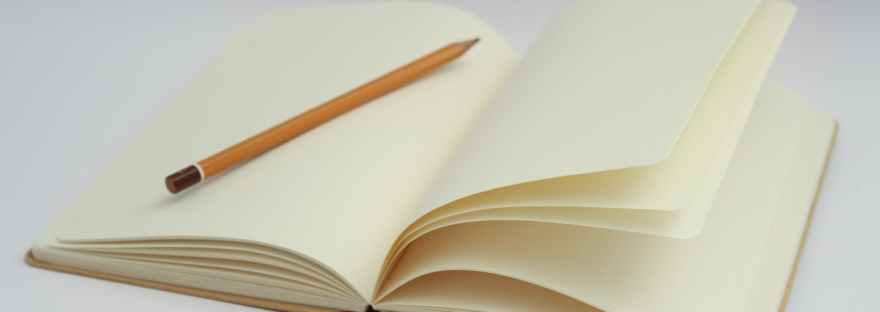 A Painter's Diaries.