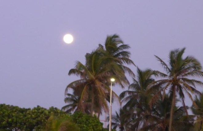 Poya day - Full moon