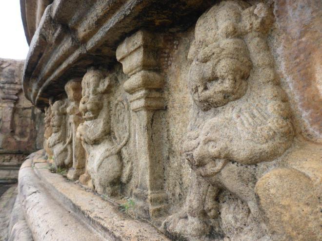 The Vatadage at the sacred Quadrangle in Polonnaruwa 5