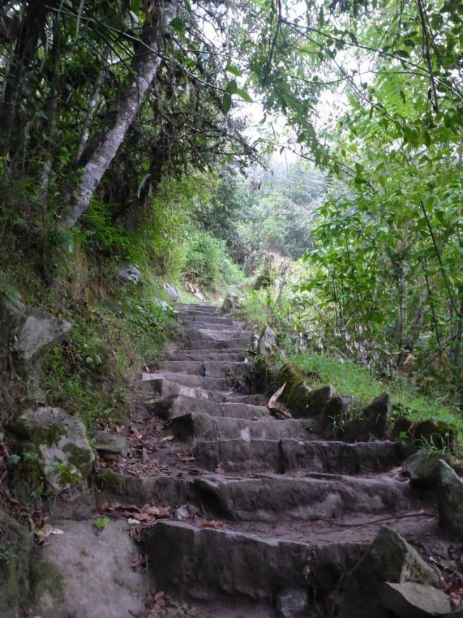 Easy start on the hike Camino Peatonal to Machu Picchu. Peru