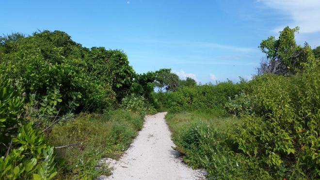 Nice walking paths at Gili Meno island, Indonesia