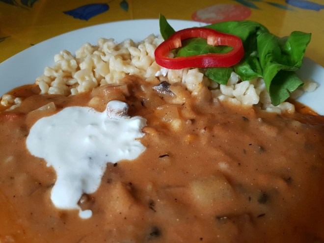 Local pasta with paprika sauce and sour cream. Taste Hungary food tour. Budapest, Hungary.
