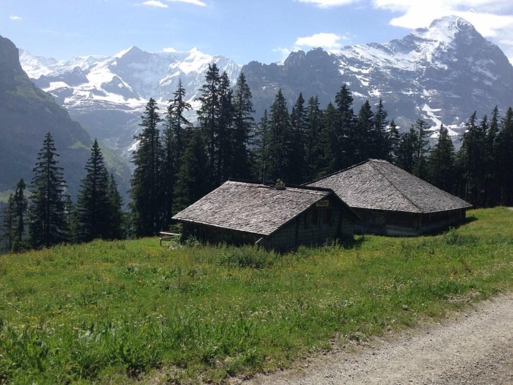 EigerUltraTrail_Switzerland_Anna_Kedzierska-1630